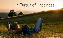 In Pursuit of Happiness by Ann Rusnak